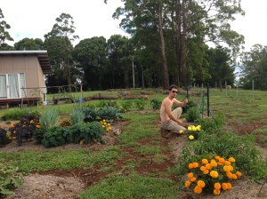 Kirk in our vegetable garden at our new home up the mountain.